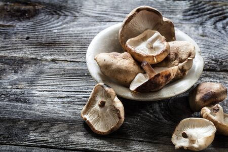 shitake: vegetable still life - Shitake mushrooms in stone cup set on genuine old wood background, studio shot Stock Photo
