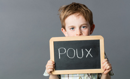 piojos: unhappy preschool child with blue eyes and red hair holding a school slate with poux written in French on it for head lice warning, grey background studio