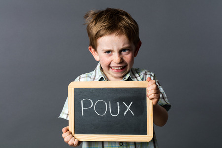 cheeky: cheeky preschool boy playing terrifying to scare school head lice, protecting himself behind a school slate with poux written in French, grey background studio