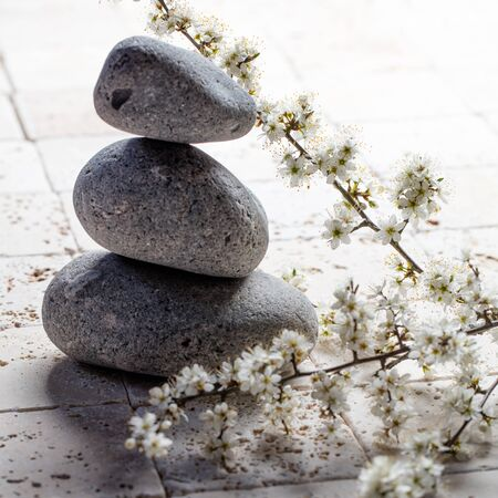 inner beauty: zen detox still-life - closeup of three pebbles in balance with fresh white spring flowers on mineral limestone background for meditation or spa concept