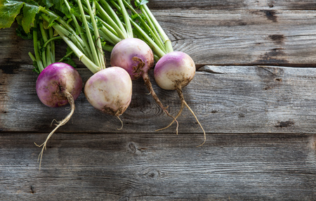 imperfect: copy space for organic agriculture and vegetarian food with imperfect sustainable turnips, fresh green tops and roots on authentic old wood background, studio shot Stock Photo