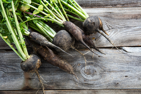 imperfect organic round and long black radishes with fresh green tops and roots on old wood background for authentic harvest, lay flat Archivio Fotografico
