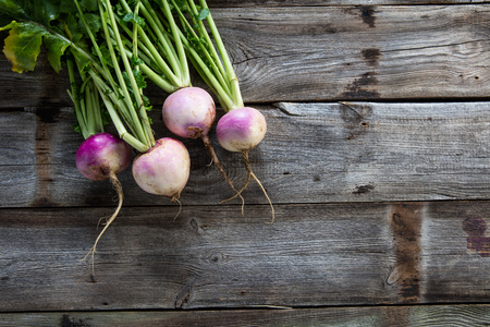 imperfect: copy space for sustainable agriculture and vegetarian food with imperfect organic turnips, fresh green tops and roots on authentic old wood background, flat lay