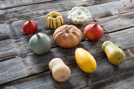 alignement: alignment of colorful seasonal organic pumpkins, acorns, gourds, blue and kuri squashes for sustainable gardening over rustic old wood background Stock Photo