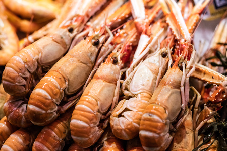 assortment of big fresh prawns or jumbo shrimps from the ocean for crustaceans and gourmet seafood at the fish shop Stock Photo