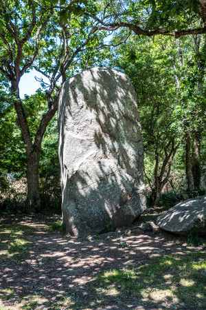 One giant standing stone in the shaded woods from the prehistoric megalith menhirs in Carnac area in Brittany, France Stock Photo