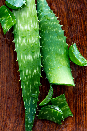 macro of organic aloe vera slices and leaves hydrated with natural anti-aging gel to treat sun burn, to moisturize and have a healthy skin, top view Stock Photo