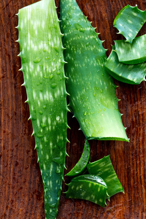 closeup top view of wet aloe vera slices and leaves with traditional hydrating gel for alternative medicine, moisturizer and healthy skin, above view Фото со стока