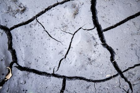 Cracked earth. Drought. Dry soil. Lack of water Stock Photo