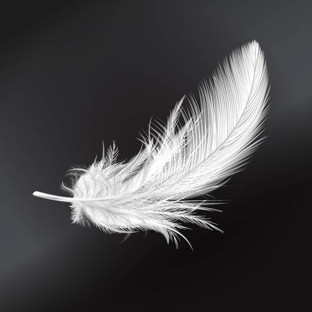Feather falling light small white