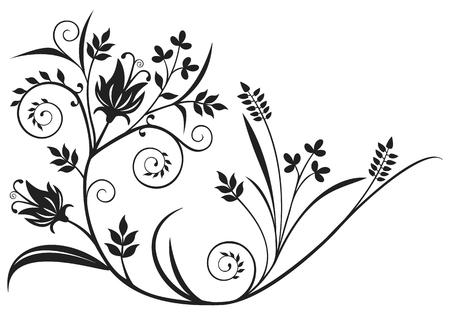 wheat grass: Black floral design element Illustration