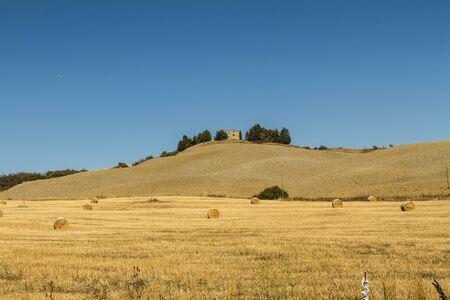 colonica con vista su campo di grano