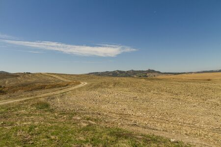 panorama di campagna toscana con stradina sterrata