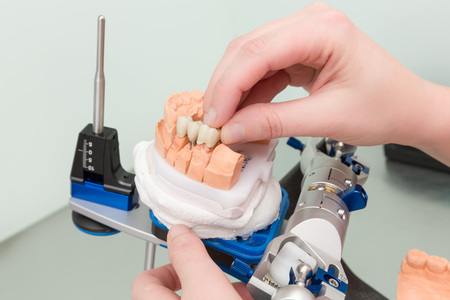 Painting work at dental imprint with artificial dentition in a dental laboratory Stock Photo
