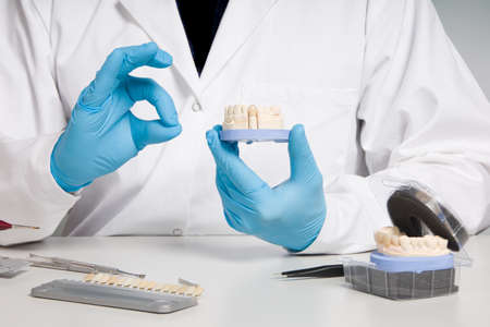 Dentist's / dental technician's hand in gloves are presenting a dental imprint with artificial dentition ready for use