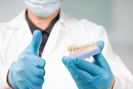 Dentist's or dental technician's hand in gloves is presenting a dental imprint with artificial dentition ready for use