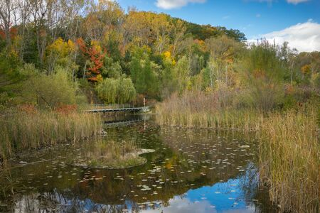 outdoor lighting: Autumn parkland featuring a sun-lit pond, vivid fall colors on trees and bright blue sky.
