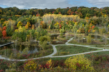 outdoor lighting: Autumn parkland with pathways and fall colors, seen from above