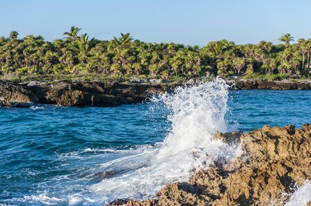 Caribbean sea waves crashing onto the iron shore of tropical coastline in Mexico. Deserted Riviera Maya landscape with rough rocks, lush green palm trees and the ocean water. Stock Photo