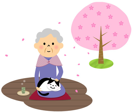 viewing: Female senior citizen, Cherry-blossom viewing
