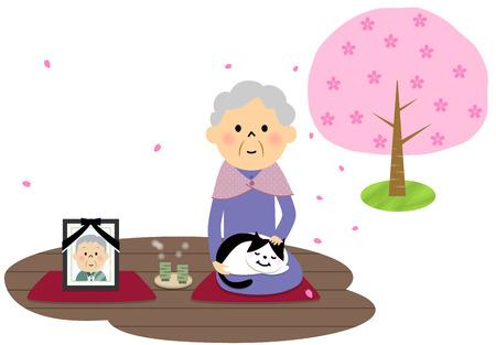 veranda: Female senior citizen, Cherry-blossom viewing