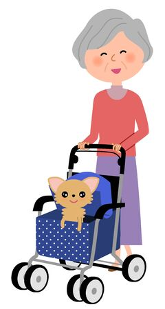 Oudere vrouwen, Walker voor een bejaarde Stock Illustratie