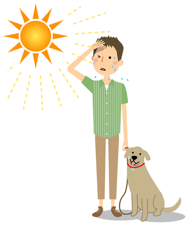 Young man walking dogs in the heat