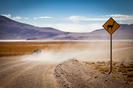 desierto: Llama señal de advertencia en el desierto de Bolivia