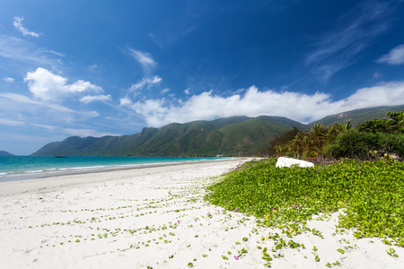 Exotic beach with white sand and green flora. Con Dao Island, Vietnam