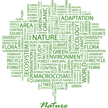 NATURE. Illustration with different association terms in white background. Vector