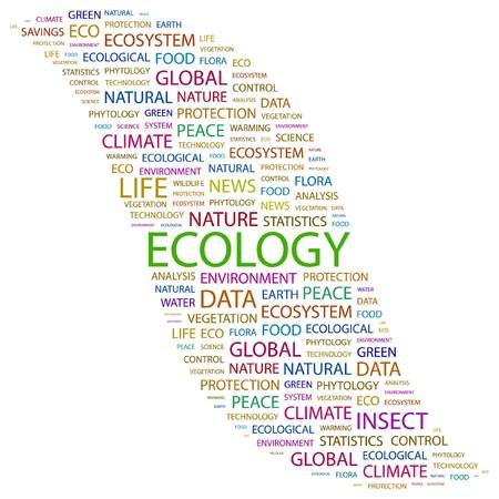 phytology: ECOLOGY. Word collage on white background. illustration.