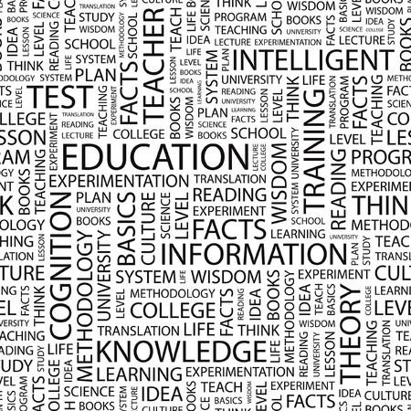 colleges: EDUCACI�N. Fondo de vector transparente. Ilustraci�n de la Wordcloud.