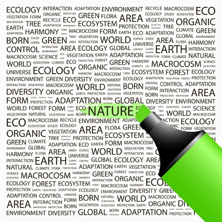 NATURE. Highlighter over background with different association terms. Vector illustration. Vector