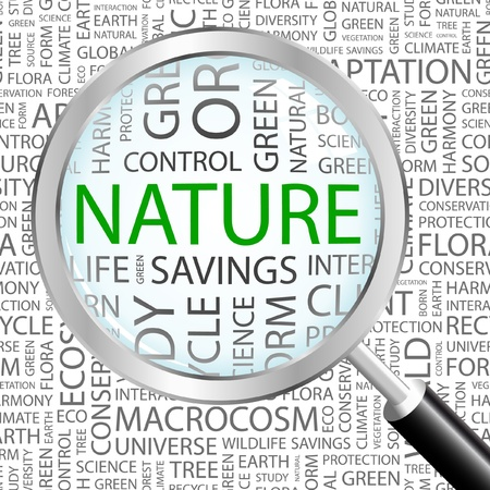 environmental analysis: NATURE. Magnifying glass over background with different association terms. Vector illustration.