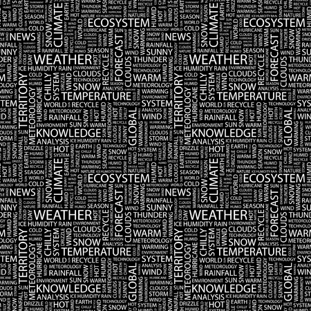 weather terms: WEATHER. Seamless vector background. Wordcloud illustration. Illustration with different association terms.