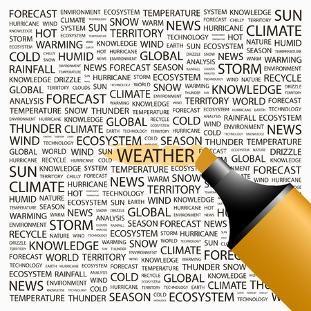 weather terms: WEATHER. Highlighter over background with different association terms. Vector illustration.