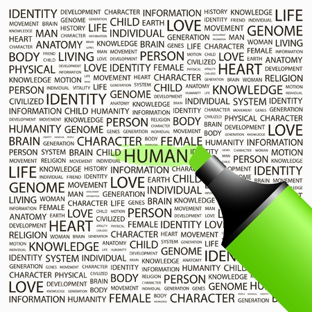 HUMAN. Highlighter over background with different association terms. Vector illustration. Stock Vector - 8840171