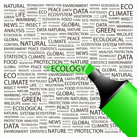 phytology: ECOLOGY. Highlighter over background with different association terms. Vector illustration.