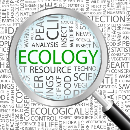 ECOLOGY. Magnifying glass over background with different association terms. Vector illustration.   Vector