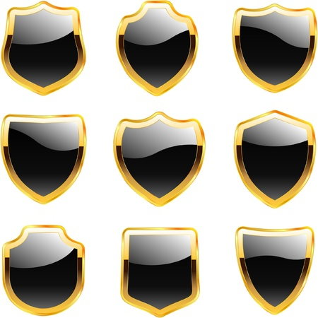 Vector shield for design   Vector
