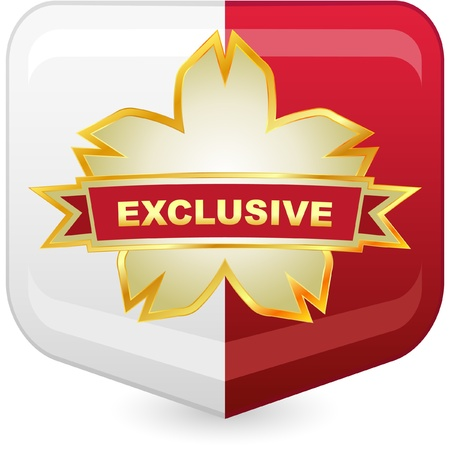 Exclusive vector emblem.   Stock Vector - 8890898