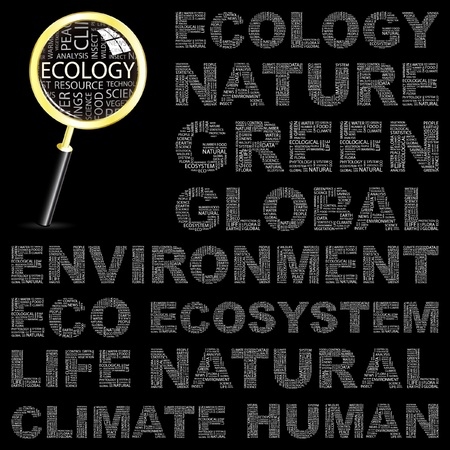 environmental analysis: ECOLOGY. Word collage on black background. Vector illustration. Illustration with different association terms.   Illustration