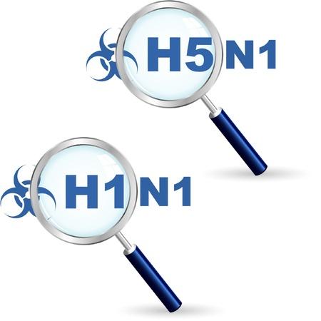 H1N1. H5N1. illustration. Vector