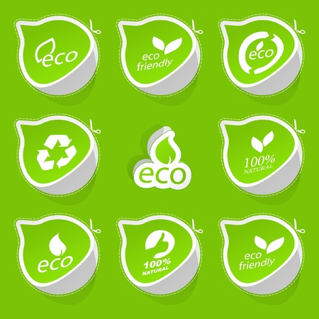Set of eco friendly, natural and organic stickers. Vector