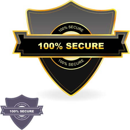 protected: 100% SECURE. Illustration