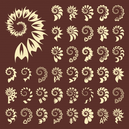 Vector shell collection Stock Vector - 15339280