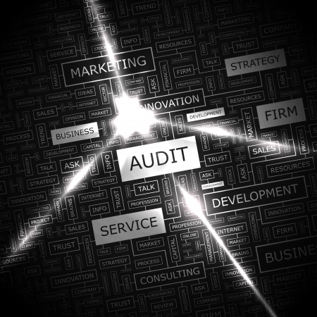 AUDIT  Word cloud concept illustration  Vector