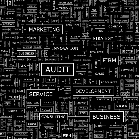 auditing: AUDIT  Word cloud concept illustration