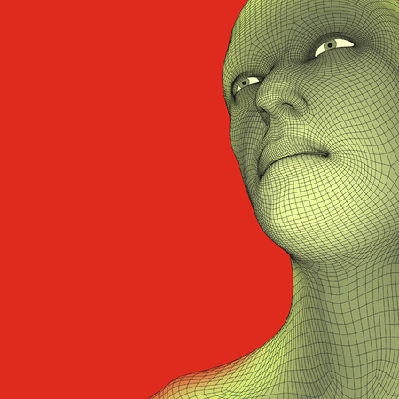 modeling: Head of the Person from a 3d Grid.
