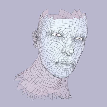 physiognomy: Head of the Person from a 3d Grid.